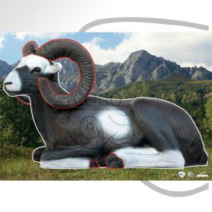 2D-0028 Bedded Mouflon-Contoured